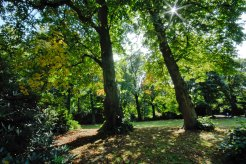 30 CannonHallGuideBook_2012-grounds