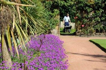 59 CannonHallGuideBook_8410-gardens
