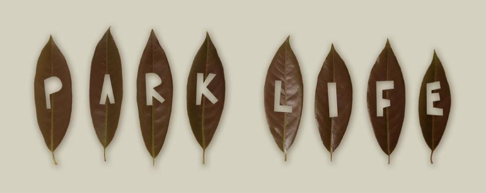 park-life-branding